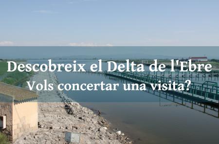 Comunitat General de Regants de la Dreta de l´Ebre :  : Visites al Delta de l'Ebre i al Consorci d'Aigües de Tarragona