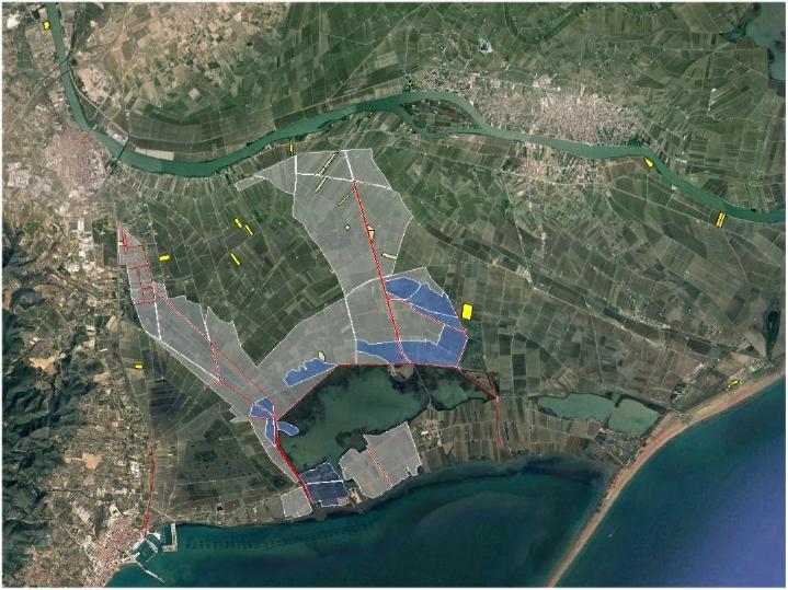Comunitat General de Regants de la Dreta de l´Ebre : NOTÍCIES : Tractament del cargol poma amb aigua de mar