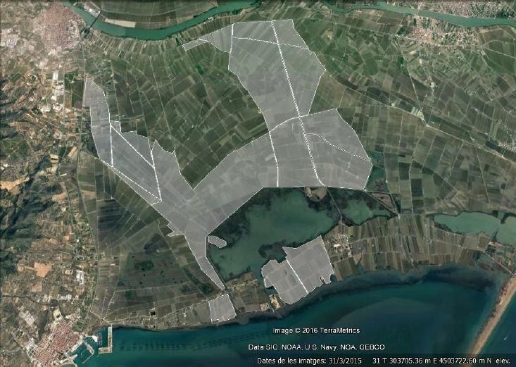 Comunidad General de Regantes de la Derecha del Ebro : NOTICIAS : Zonas de inundación preventiva con agua dulce y zonas de influencia a los tratamientos con agua de mar